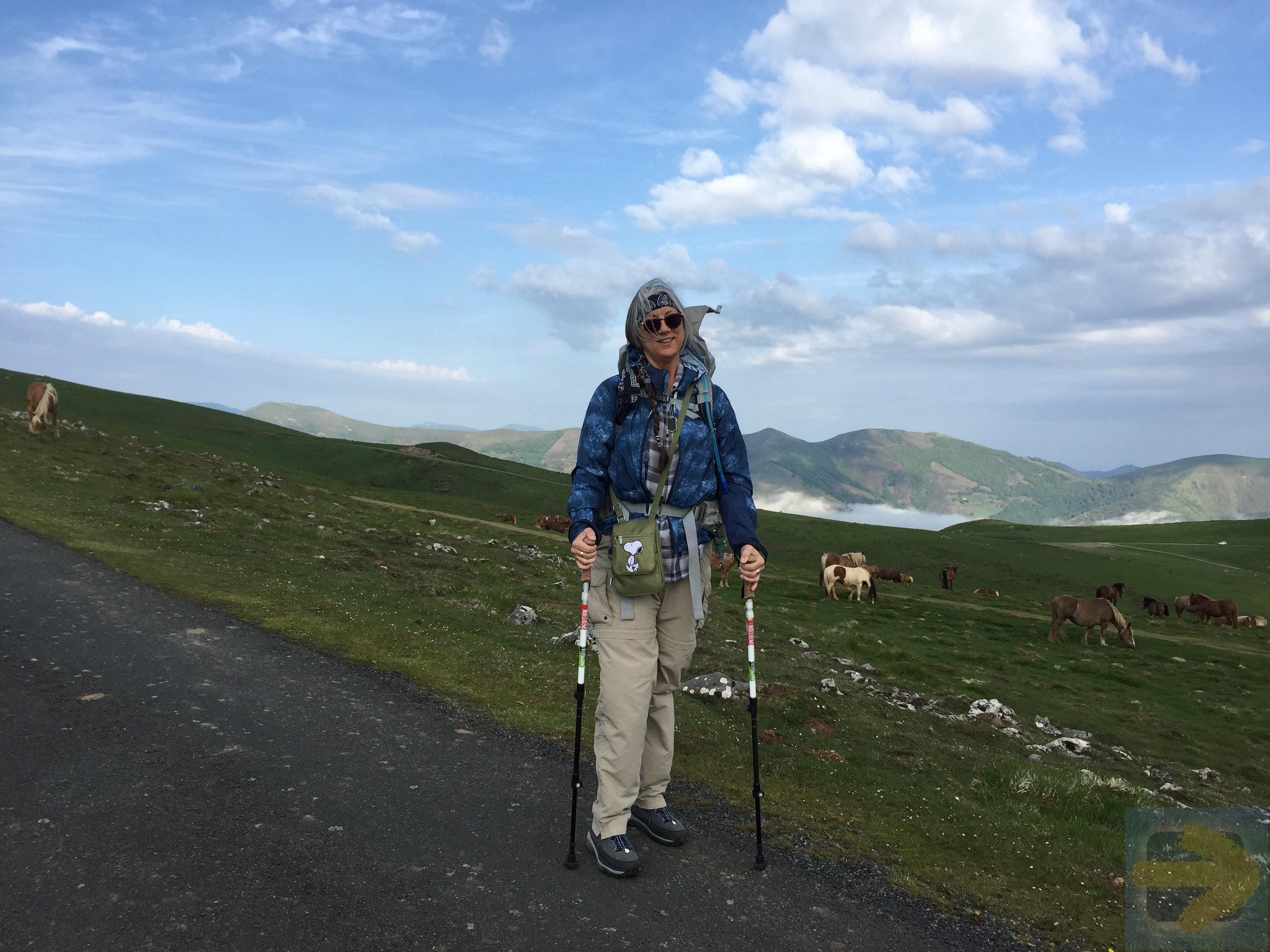 Above the clouds ~ trekking through the Pyrenees May 2016