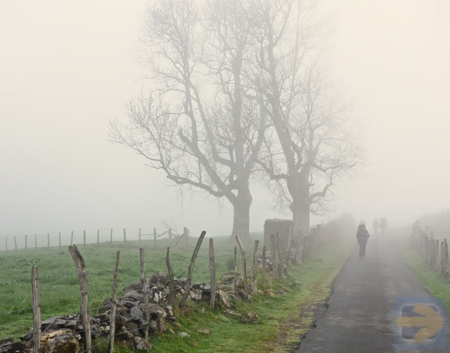 Camino Frances 2016 - Day 2 Foggy Morning on Napoleon Route