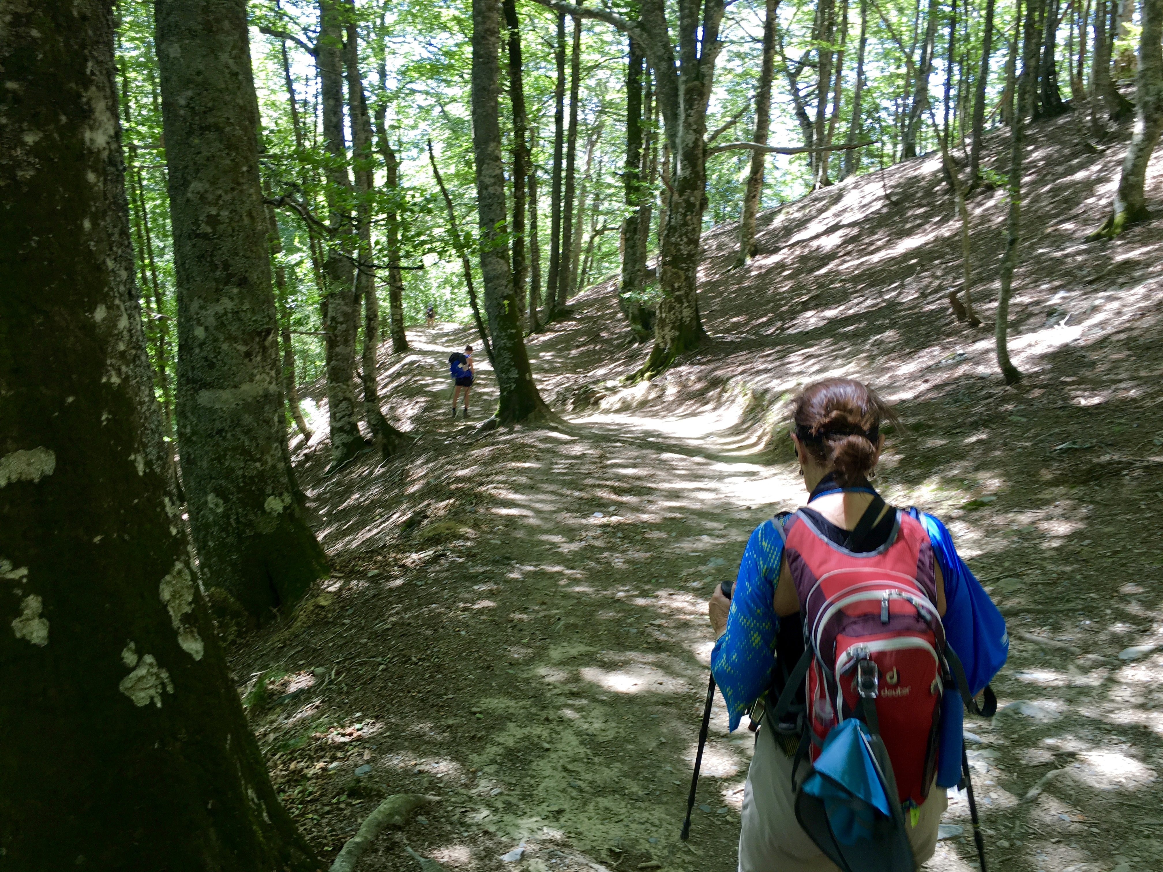 Downhill to Roncesvalles