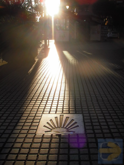 Logrono in the morning