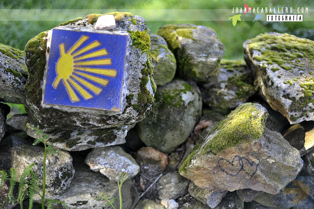 Love in the Camino (Primitivo)