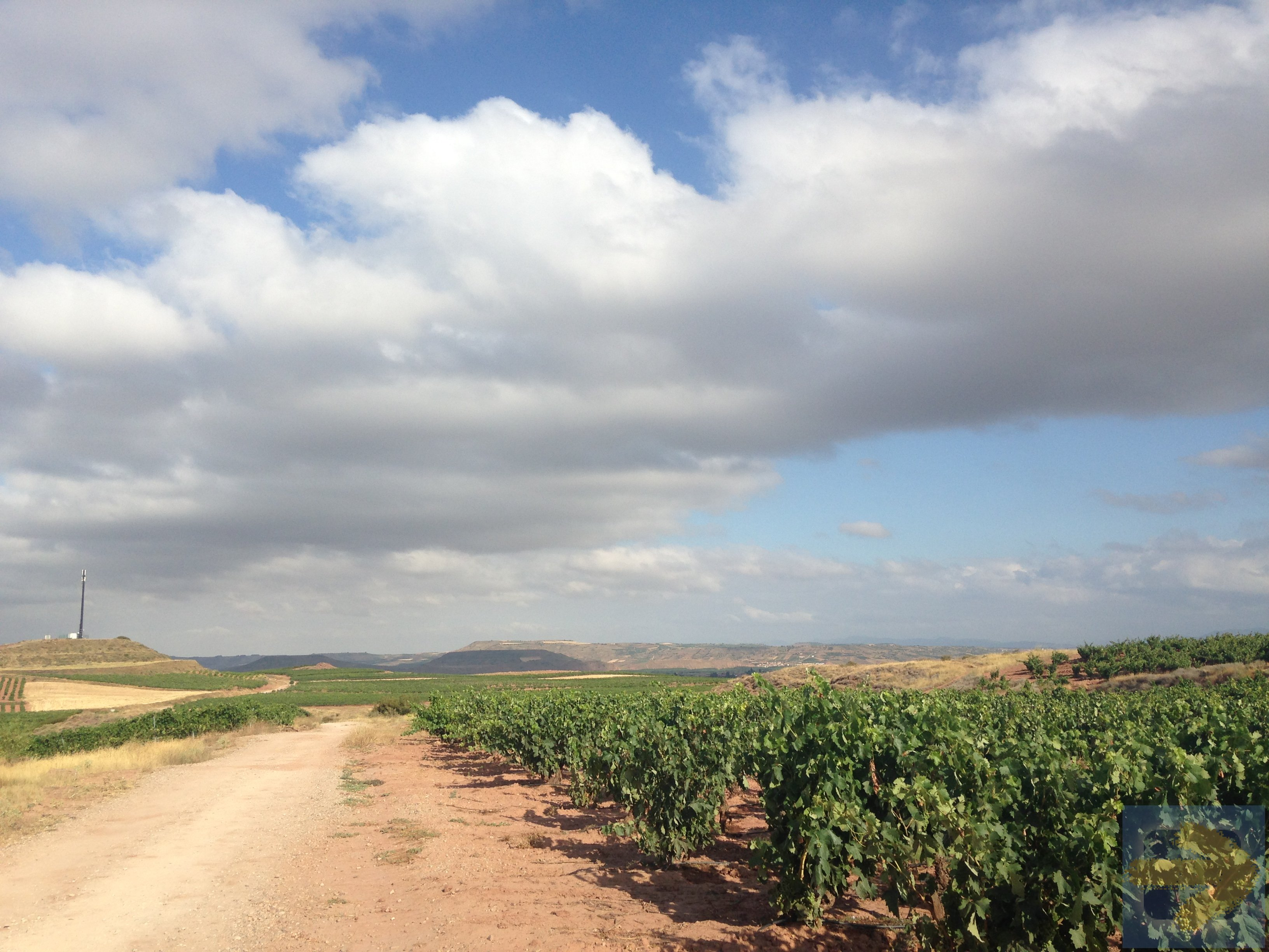 Where your Rioja wine comes from